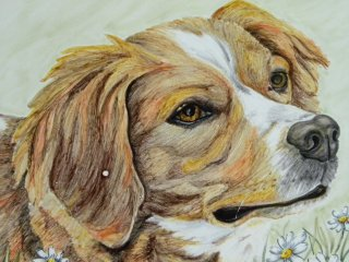 Mattonella decorata a mano con cane.Tecnica:maiolica